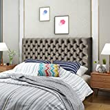 Christopher Knight Home 303581 Jezebel Velvet Queen/Full Headboard, Grey/Black Steel