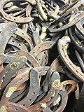 5billion 5PCS Authentic Certified Horseshoe Used
