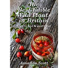 The Best Edible Wild Plants in Britain: Easy to find & good to eat