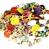 180 PCS Sea Shells Mixed Beach Seashells Starfish, Colorful Natural Seashells 1.1 Lb Perfect Accent for Candle Making, Home Decoration, Beach Theme Party Wedding Décor, Fish Tank and Vase Filler