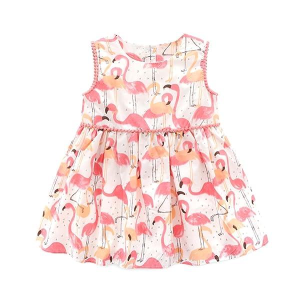 55e8b61b2 Amazon.com - Flamingo Baby
