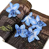 20pcs 8cm Artificial Silk Orchid Dendrobium Flower Heads Decor -Blue