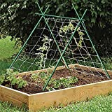 EcoStake Garden Stakes 6-Ft for Climbing Plants