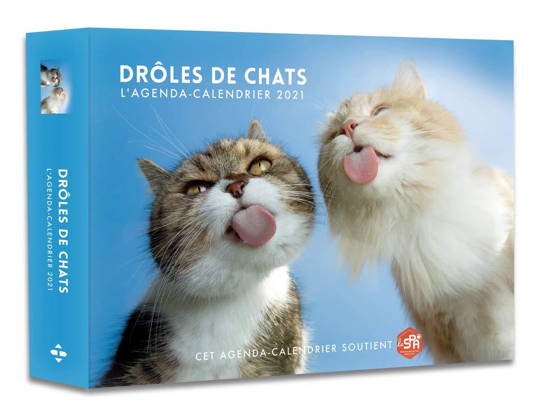 L'Agenda calendrier Drôles de Chats 2021 (French Edition