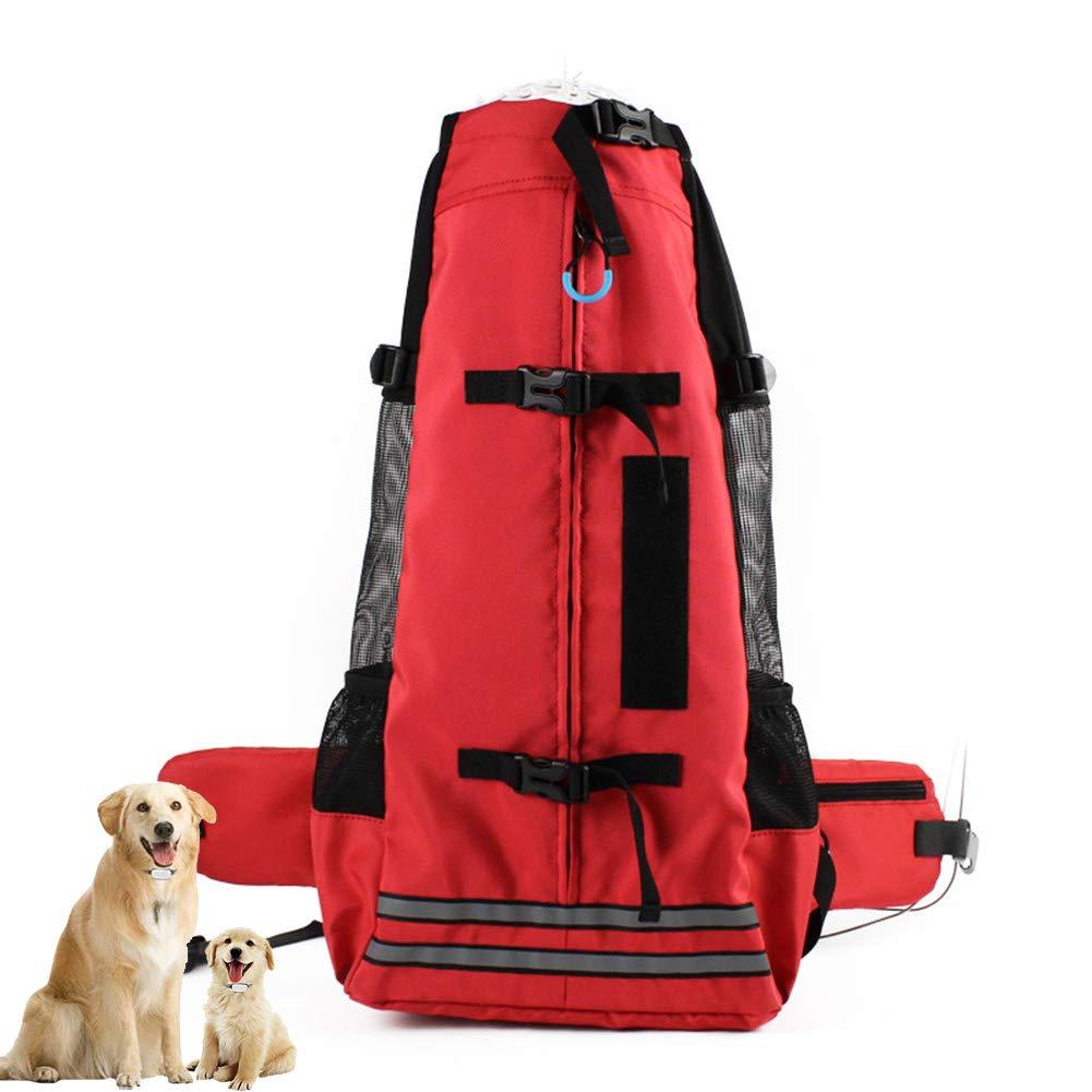 L DYYTR Pet Travel Carrier Dog Backpack,Waterproof Fabric Soft Side Pet Backpack Cat Small Dog Foldable Rucksack Carrier Bag Breathable Mesh