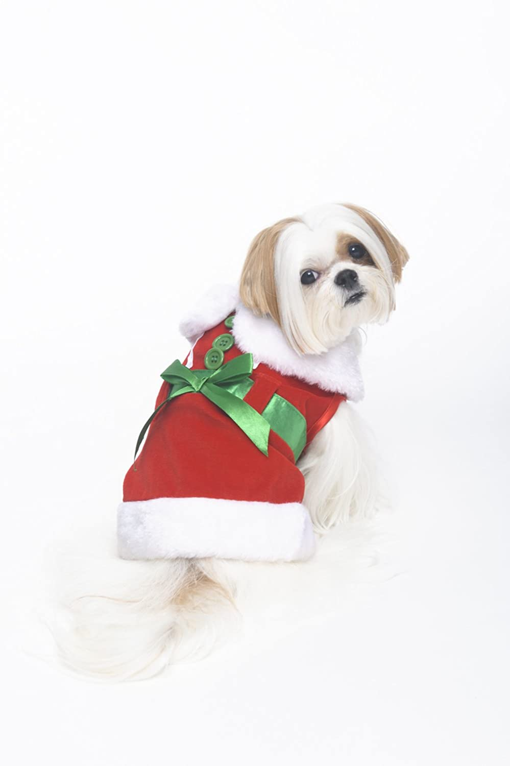 Fashion Pet Mrs. Claus Costume for Dogs, Small