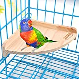 Wooden Perch Stand Platform for Bird Parrot Budgies Macaw African Greys Cockatoo Parakeet Conure Lovebird Finch Canary Hamster Gerbil Rat Mouse Cage Shelf Toy