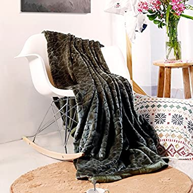 Qbedding 380 GSM Anti-Static Microplush Queen (78-Inch-by-90-Inch) Fleece Blanket, Cobbled-Green