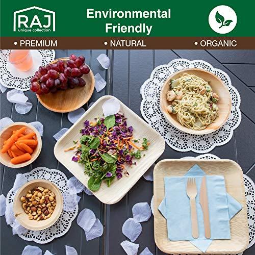 Raj Disposable Palm Leaf Plates [25-Pack] 7\