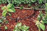 "Rain Bird T22-250S Drip Irrigation 1/4"" Blank"