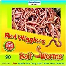 Insectsales.com Red Wigglers (90 Count) LIVE, Healthy Red Worms for Composting & Fishing Bait