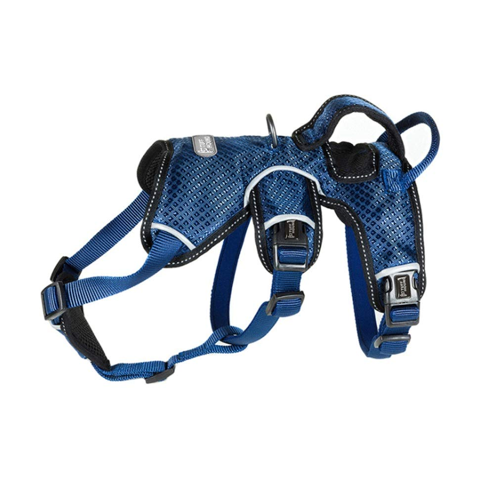bluee-1 L bluee-1 L Dog Vest Harness, Safety Buffer Chest Strap Leash golden Hair Dog Medium Large Elderly Disability Dog Outdoor Running Walking Vest Harness (color   bluee-1, Size   L)