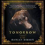 Tomorrow | Damian Dibben