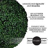 3rd Street Inn Boxwood Topiary Ball