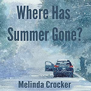Where Has Summer Gone? Audiobook
