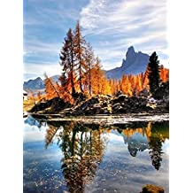 Alpinisme (French Edition)