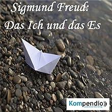 Das Ich und das Es von Sigmund Freud Hörbuch von Alessandro Dallmann Gesprochen von: Michael Freio Haas