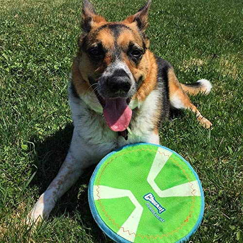Chuckit! Paraflight Flyer Dog Frisbee for Long Distance Fetch Orange/Blue 2 Sizes