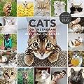 Animal Care & Pets