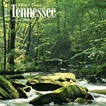 Tennessee, Wild & Scenic 2016 Square 12x12 by Browntrout Publishers (2015-07-15)
