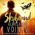 Skybound | Aleksandr Voinov