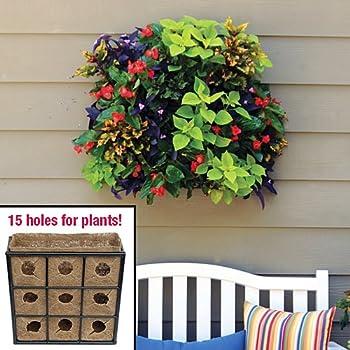Vertical garden pamela crawford living wall w - Indoor living wall planter ...