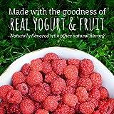 Gerber Fruit and Veggie Melts, Very Berry Blend, 1