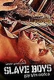 Slave Boys: Gay S/M Erotica