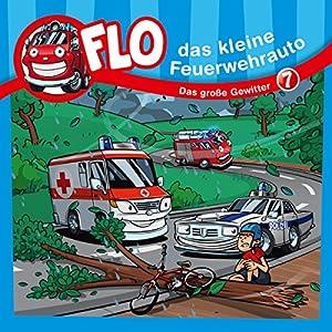 Das große Gewitter (Flo, das kleine Feuerwehrauto 7) Hörspiel