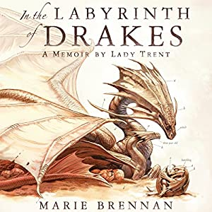 In the Labyrinth of Drakes Audiobook