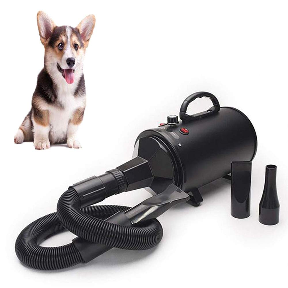FXQIN Professional Pet Hair Dryer Dog Grooming Blower With Heater, Noise Reduction & Stepless Adjustable Speed & 3 Different Nozzle (Black)