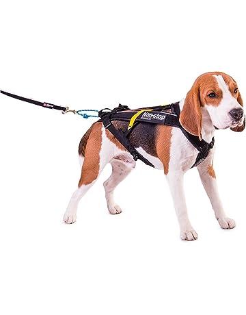 Non-Stop dogwear - Arnés para perros Non-Stop Freemotion