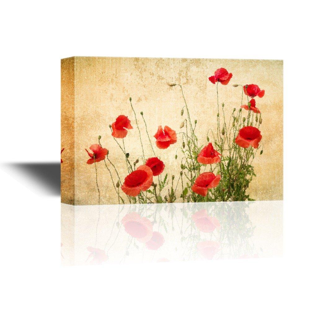Picture Poppies Flowers: Amazon.com