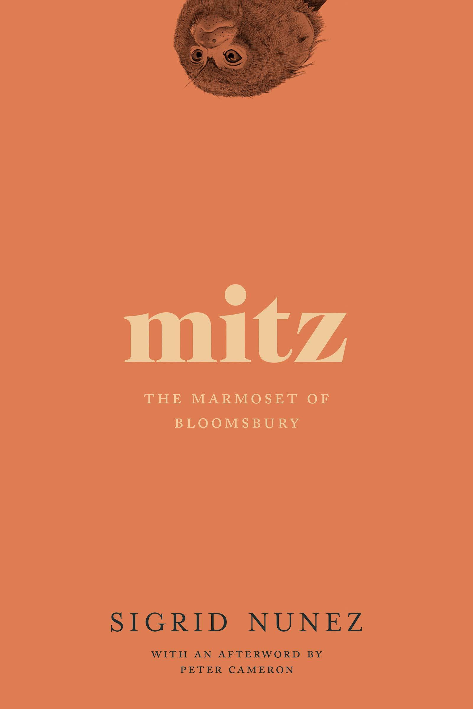 Mitz The Marmoset Of Bloomsbury By Sigrid Nunez