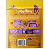 Wellness Soft Puppy Bites Natural Grain Free Puppy