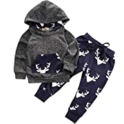 CPEI Toddler Infant Baby Boys Deer Long Sleeve Hoodie Tops Sweatsuit Pants Outfit Set (A, 0-6 Months)