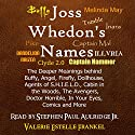Joss Whedon's Names: The Deeper Meanings Behind Buffy, Angel, Firefly, Dollhouse, Agents of S.H.I.E.L.D., Cabin in the Woods, The Avengers, Doctor Horrible, In Your Eyes, Comics and More Audiobook by Valerie Estelle Frankel Narrated by Stephen Paul Aulridge Jr