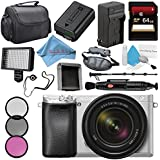 Sony Alpha a6300 Mirrorless Digital Camera with 18-135mm Lens (Silver) ILCE-6300M/S + NP-FW50 Replacement Lithium Ion Battery + External Rapid Charger + Carrying Case + Memory Card Wallet Bundle