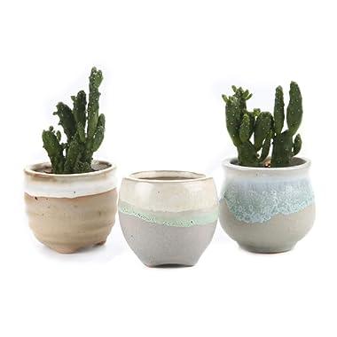 T4U 2.5 Inch Ceramic Flowing Glaze Solid Gray Base Serial (3 Shape) Set Succulent Plant Pot/Cactus Plant Pot Flower Pot/Container/Planter Package 1 Pack of 3