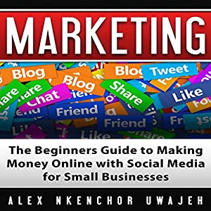 Marketing: The Beginners Guide to Making Money Online with Social Media for Small Businesses Audiobook
