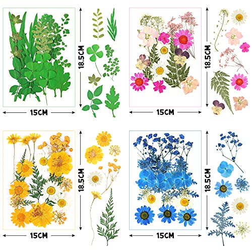 BigOtters 115 Pcs Real Dried Pressed Flowers for Resin Set, Natural Pressed Butterfly Decals Real with Curved Tweezers Colorful Pressed Flowers for DIY Candle Resin Jewelry Crafts Art Floral Decor