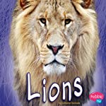 Lions | Catherine Ipcizade