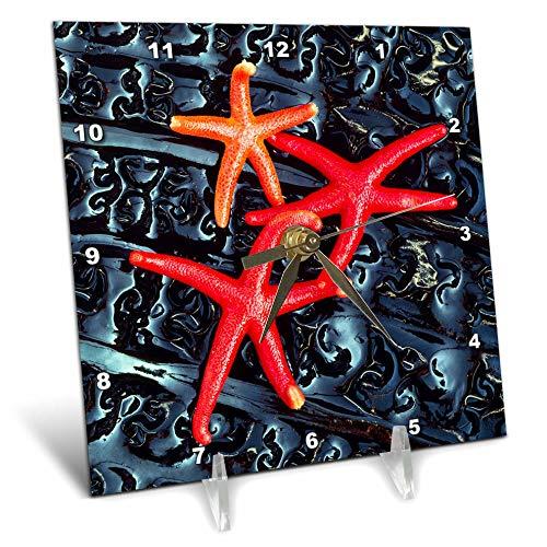 (3dRose Danita Delimont - Starfish - Starfish on kelp, Washington State, USA - 6x6 Desk Clock (dc_315085_1))