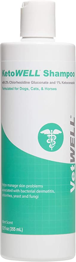 Vetwell Ketoconazole Chlorhexidine Shampoo For Dogs Cats Medicated Shampoo For The Treatment Of Skin Infections Growths Abrasions Acne Hot Spots Oatmeal Aloe 12oz Mint Scent