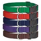 6 - Large Economy Polypropylene Dog Collars