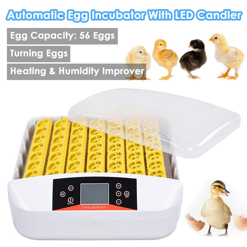 Yescom Digital 56 Egg Incubator Hatcher Temperature Control Automatic Turning with Built-in LED Candler by Yescom