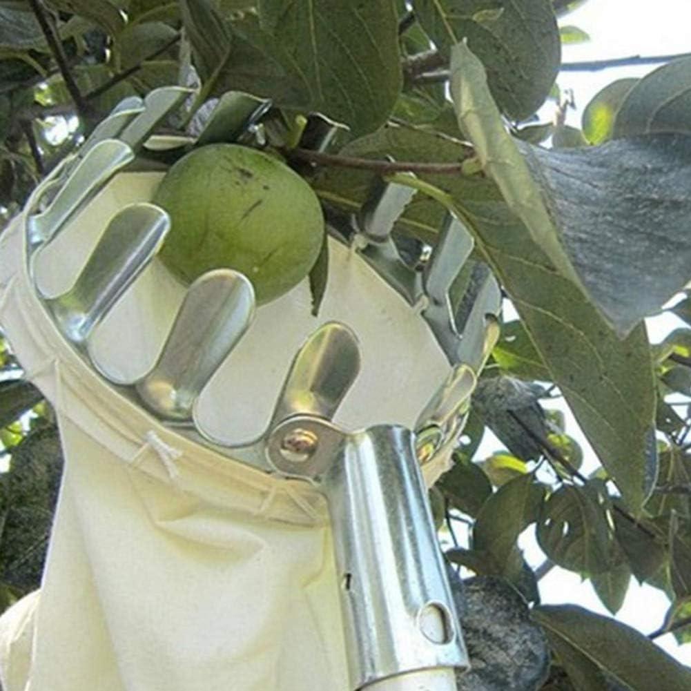 BESTEU Recogedor de Fruta Caliente Metal Head Herramientas de Picking de Fruta para Recoger Apple Citrus Pear Melocot/ón Herramientas de jard/ín Solo Picking Heads