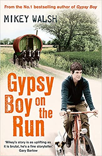 Gypsy Boy Book