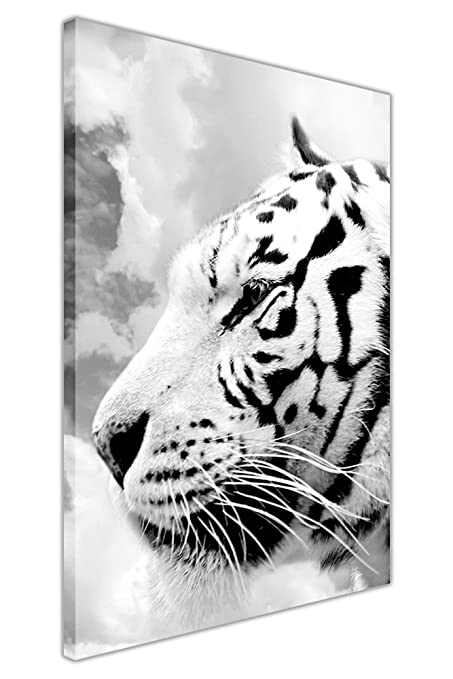 Canvas it up black and white wall art white tiger on canvas pictures animal prints home