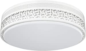 LED Ceiling Light, FaithSail 18 inch Modern Dimmable Round Lighting Fixture Flush Mount, 60W 6600lm 4000K, CRI 90+, ETL Listed for Bedroom, Kitchen, Dining Room, Hallway, Metal Body and Acrylic Shade